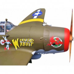 AVION P-47 G 50CC SEAGULL MODELS